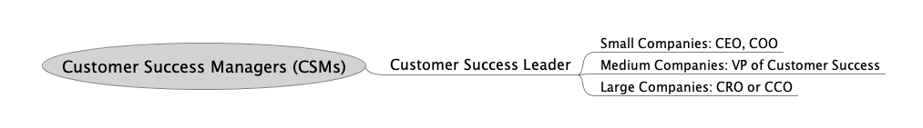 Customer success organization